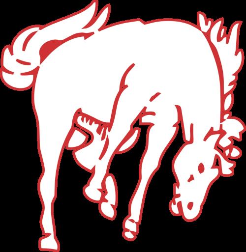 Photo of Bronco Logo